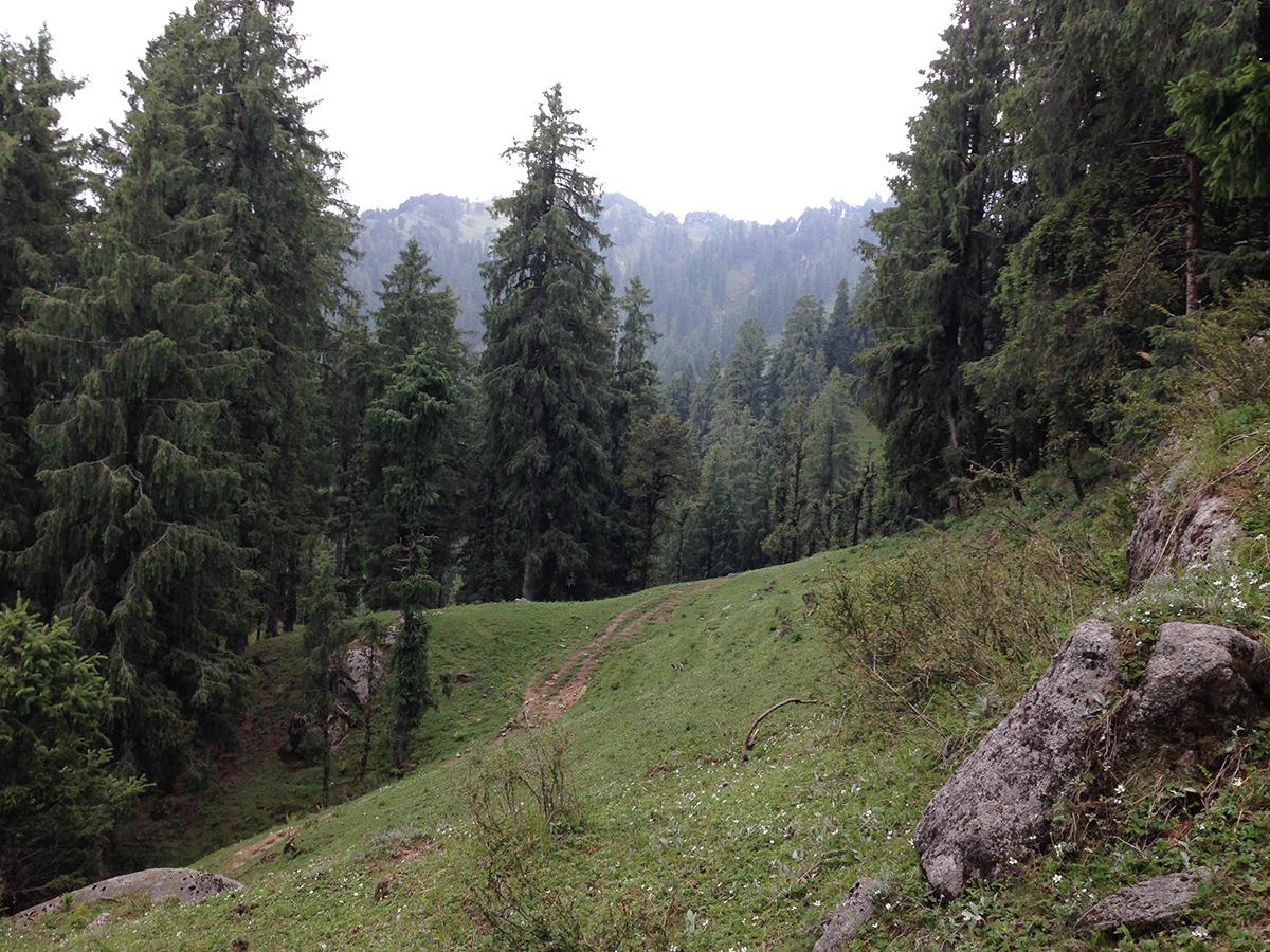 kamrunag-lake-trek-mandi (11)