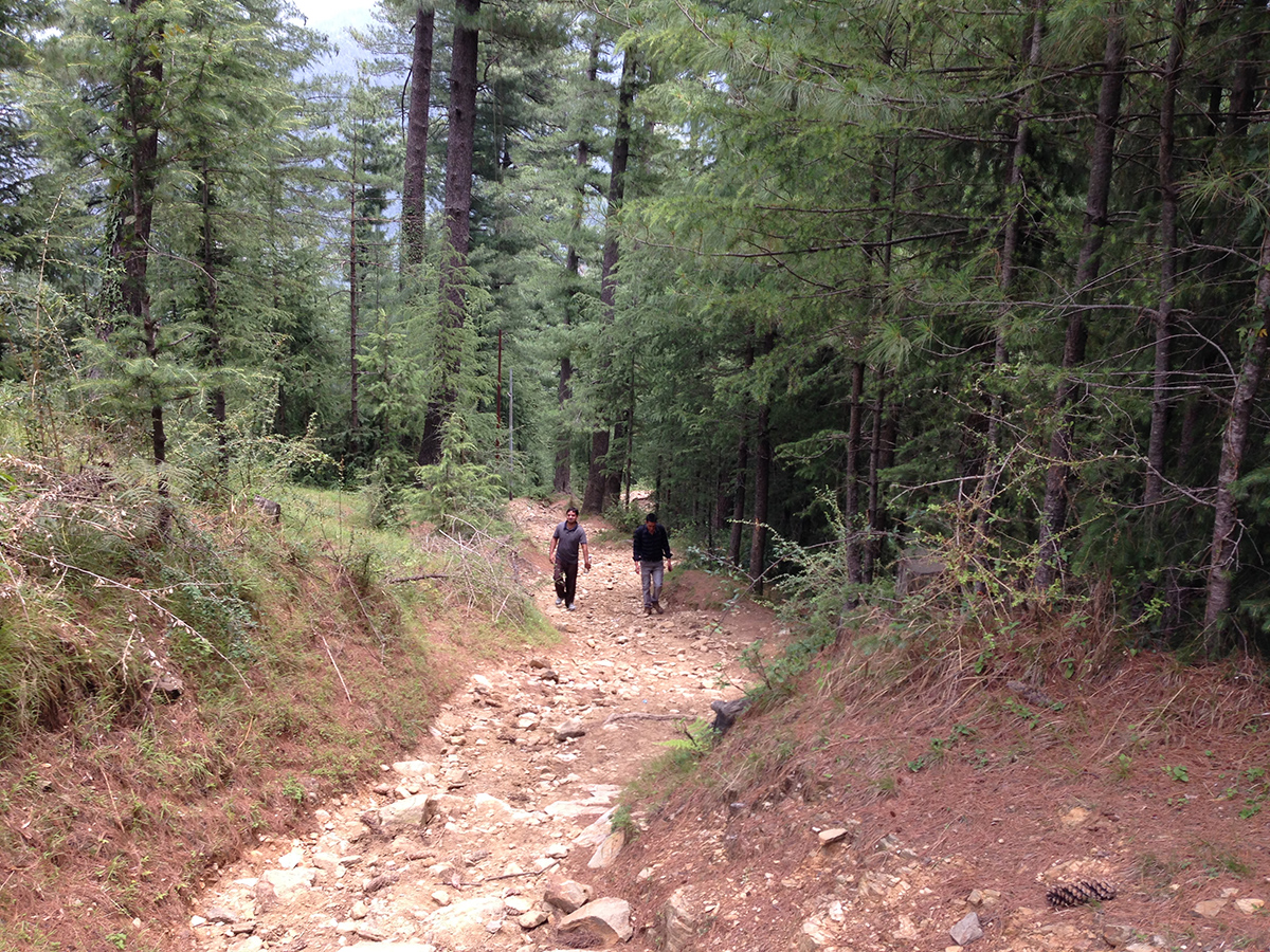 kamrunag-lake-trek-mandi (3)