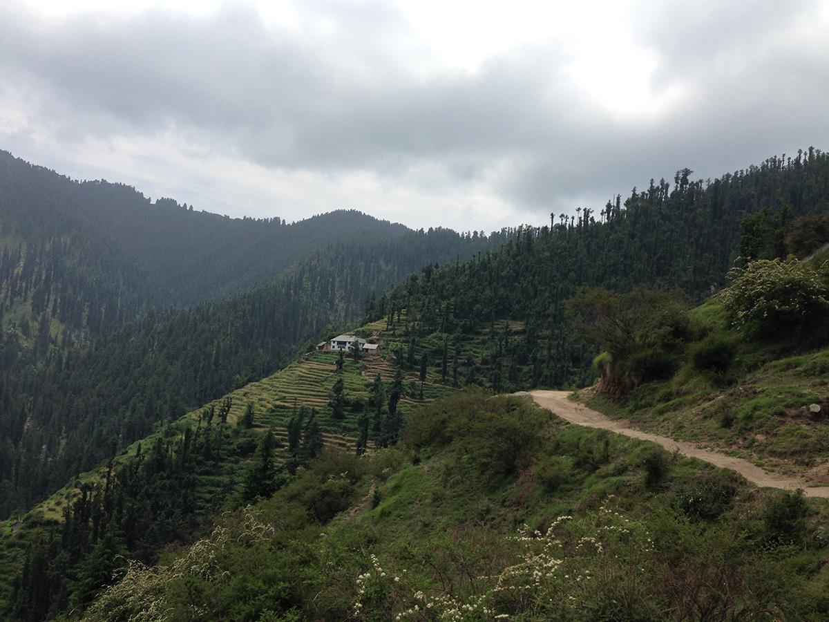 kamrunag-lake-trek-mandi (7)