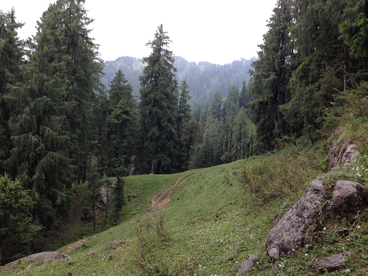 kamrunag-lake-trek-mandi (11)