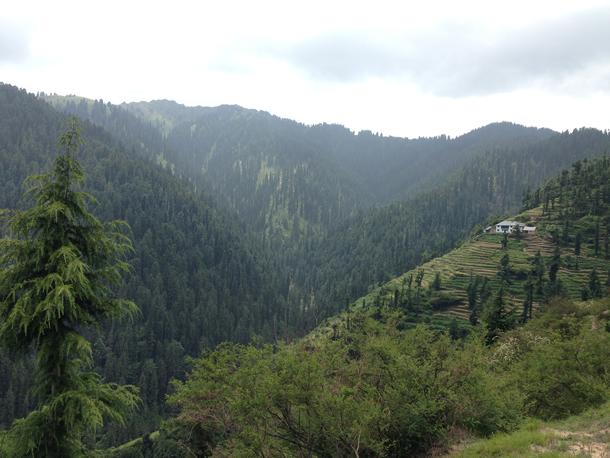 kamrunag-lake-trek-mandi (6)