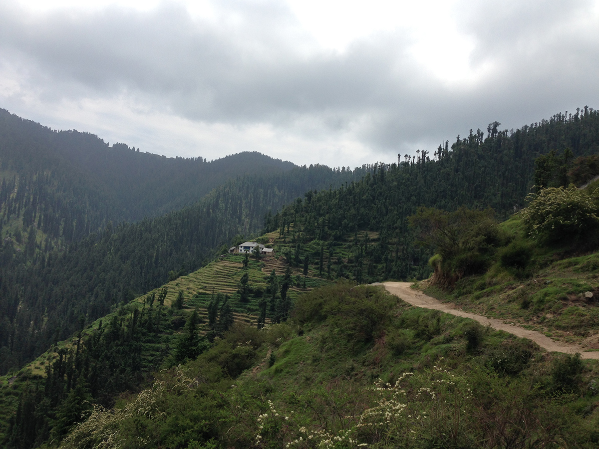 kamrunag-lake-trek-mandi (7)
